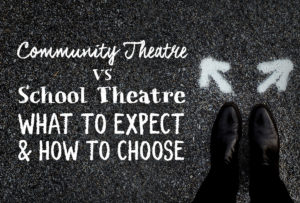 community-vs-school-theatre_Metadata